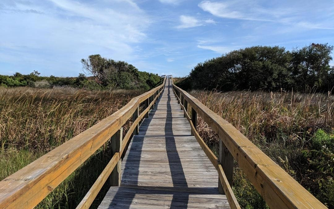 Lowcountry Day Trips | Ussery Group Real Estate